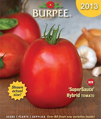 2013 burpee cover